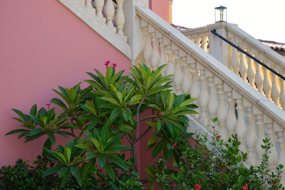 jamaica steps