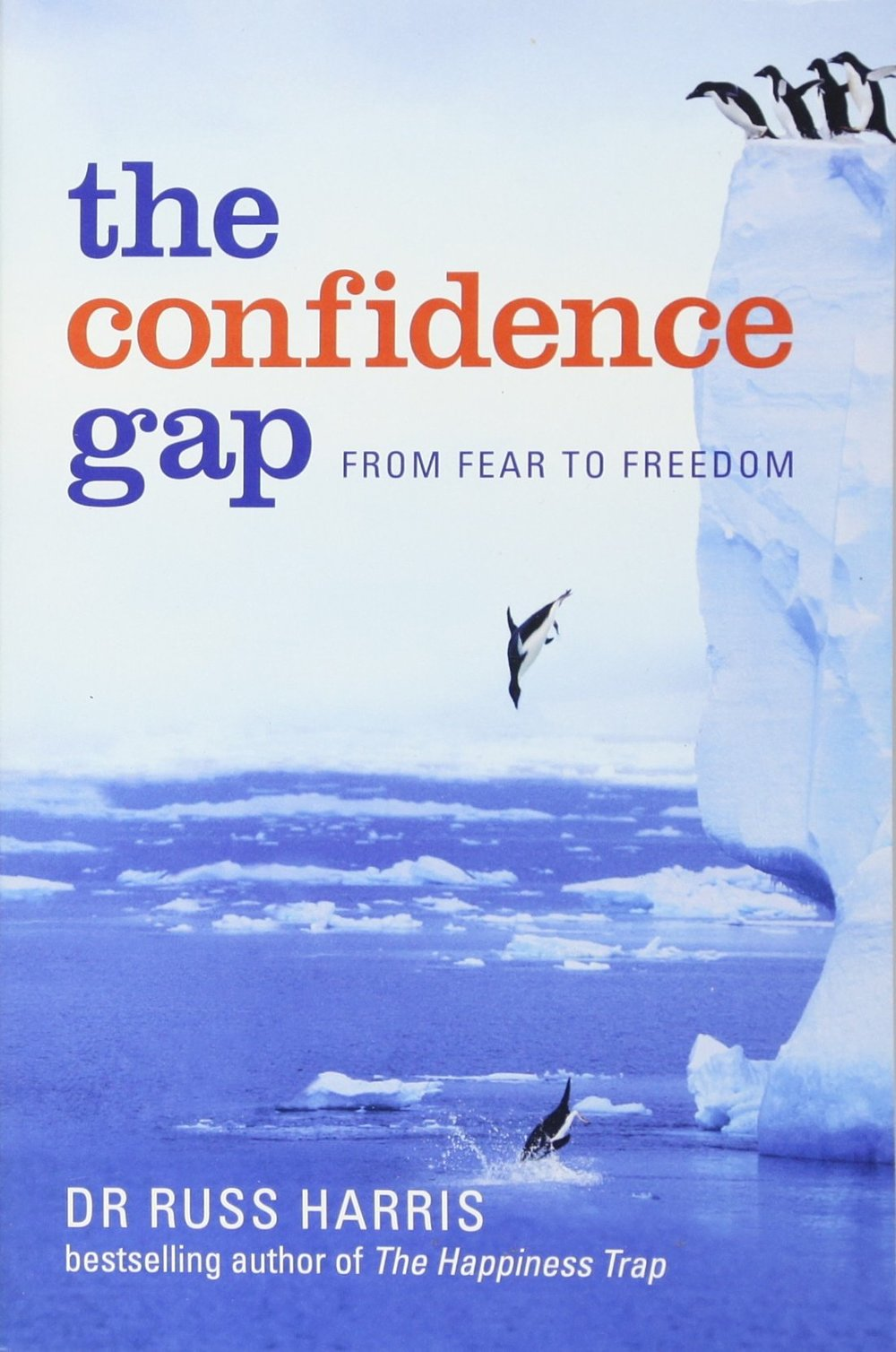 the confidence gap.jpg