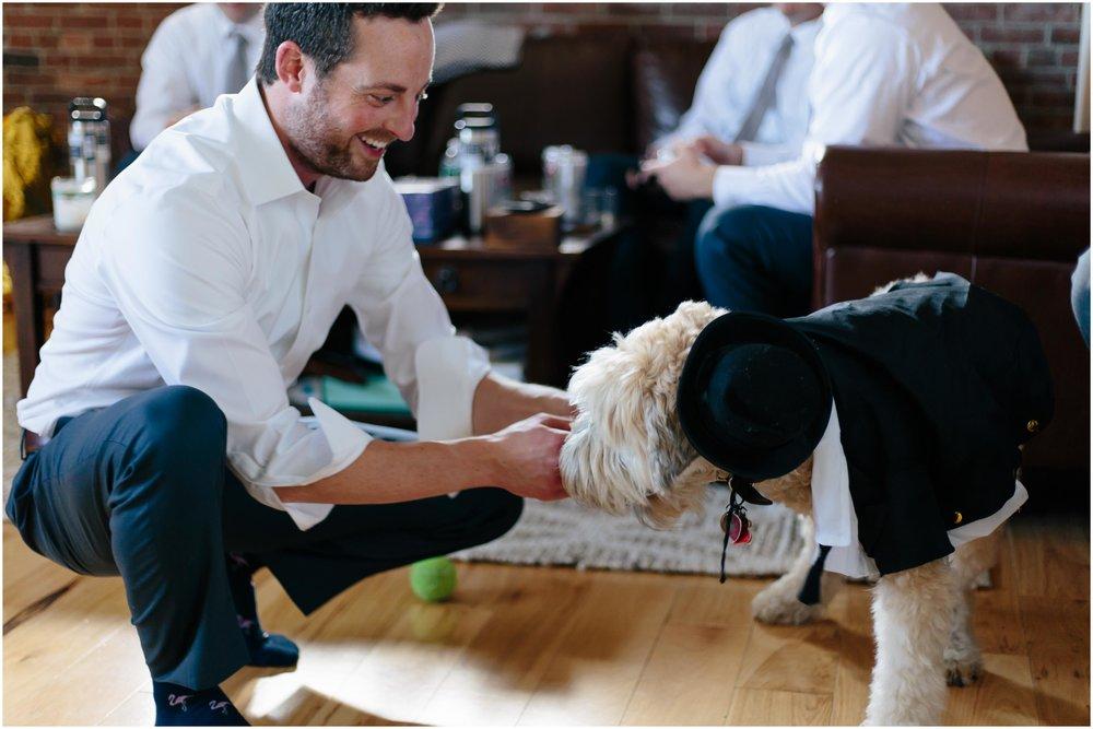 Nautical Massachusetts Jewish Wedding in the Boston Navy Yard groom and dog
