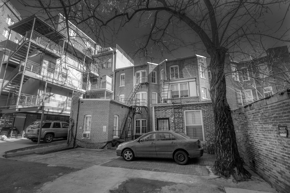 The rear of 1510 and 1512 21st Street, with 1508 visible to the right of the tree