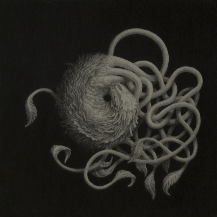 Ryan Wise,  Silent Traveler , 2014  Graphite  10 x 10 in.  $600