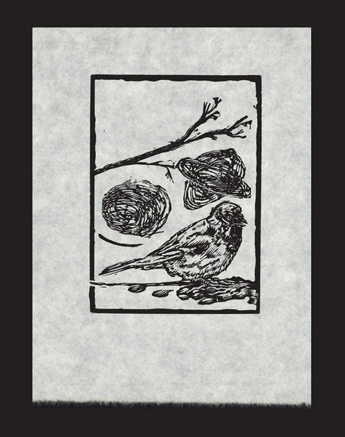 George Walker     Bird Thoughts 2, 2011    Wood engraving