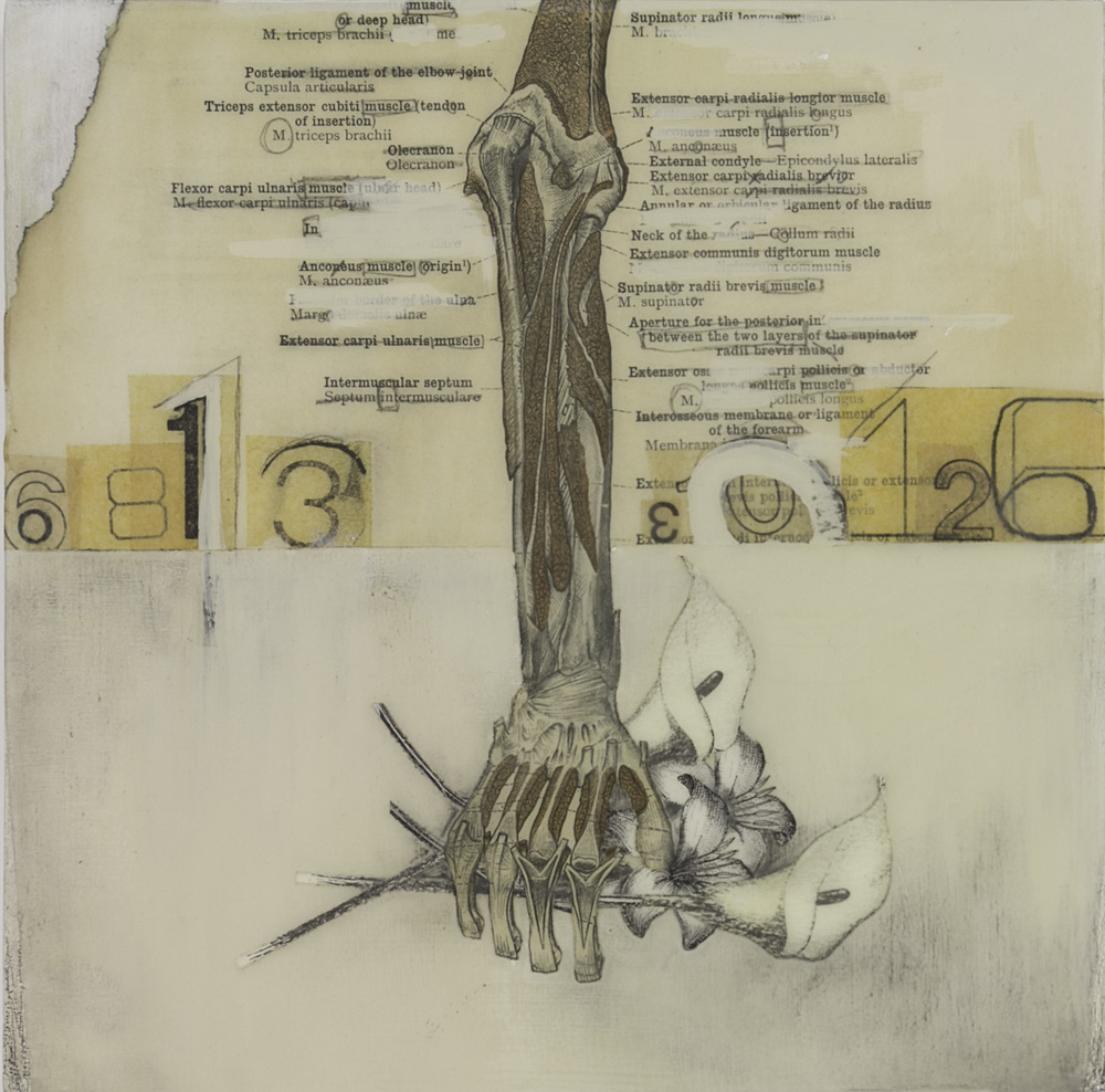 Karen Chenkovich   Hand With Flowers , 2010  Mixed media on panel: collage, found papers, acrylic, charcoal, graphite, beeswax