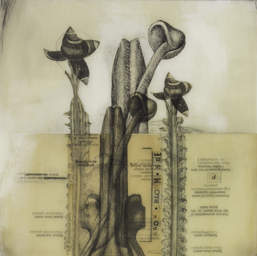 Karen Chenkovich   Penis and Spine Garden , 2010  Mixed media on panel: collage, found papers, acrylic, charcoal, graphite, beeswax