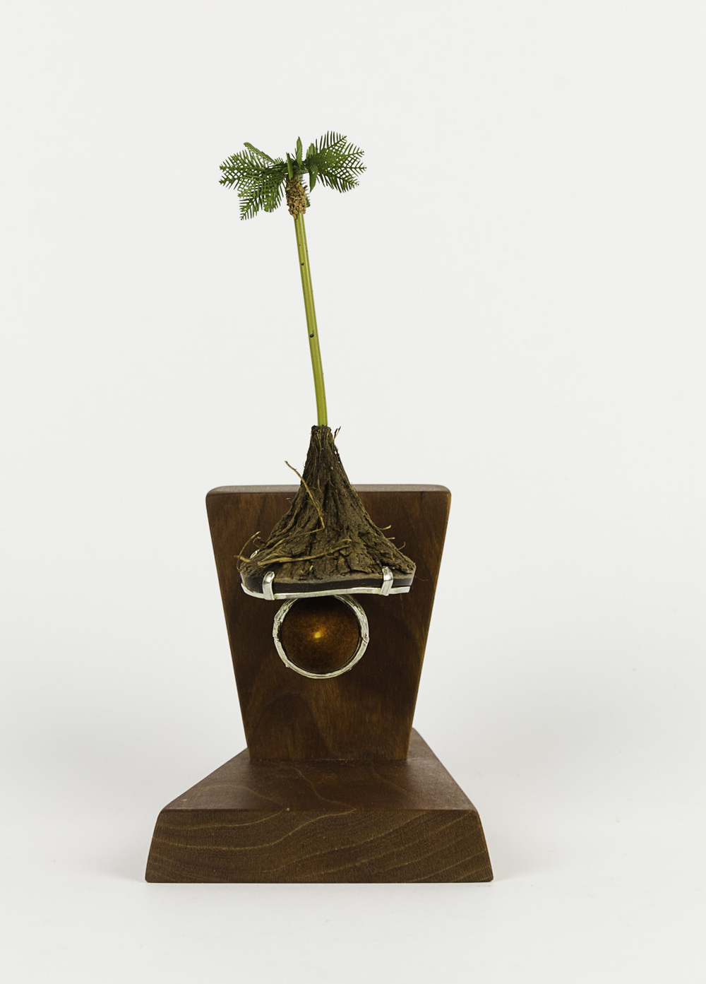 Sarah Hood   Palm Ring , 2011  Sterling silver, chestnut, model railroad materials, cherry wood stain