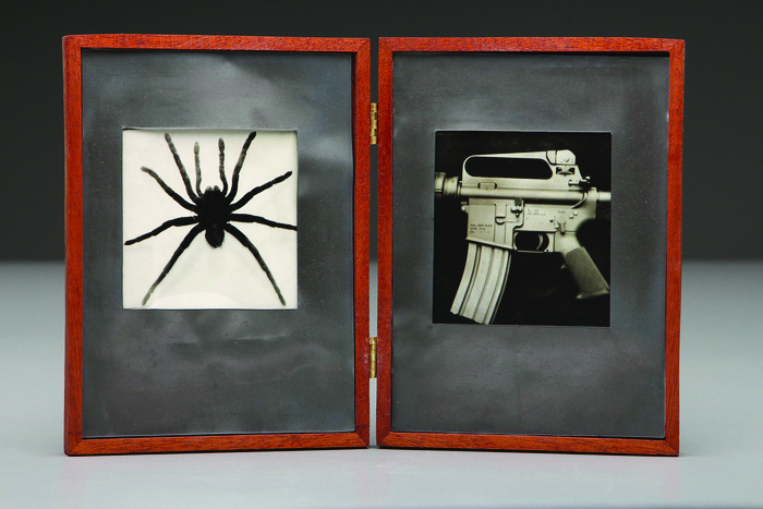 Leighton McWilliams      Spider/AR-15 , 2013     Photo sculpture