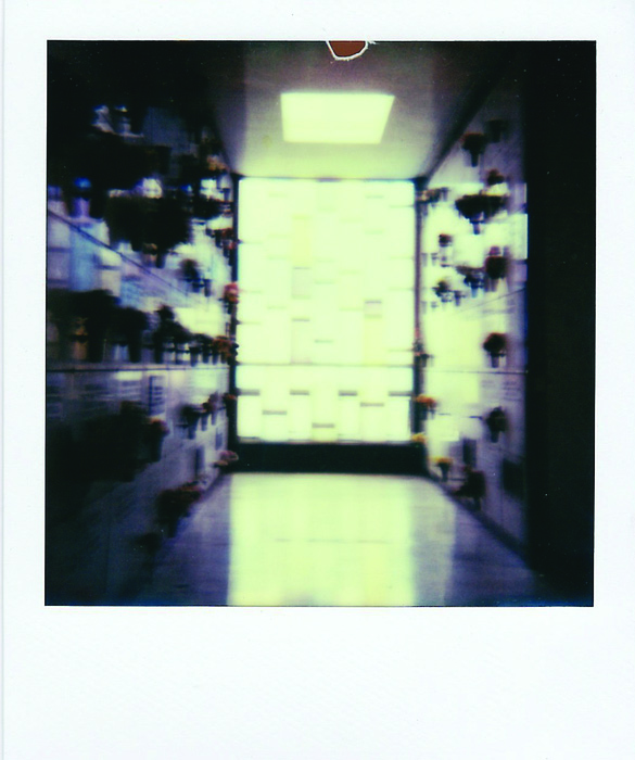 Elena Ricci      Mausoleum , 2014     Color Polaroid