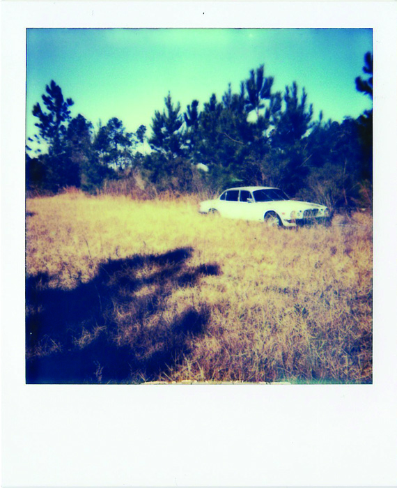 Elena Ricci      Jaguar,  2014     Color Polaroid