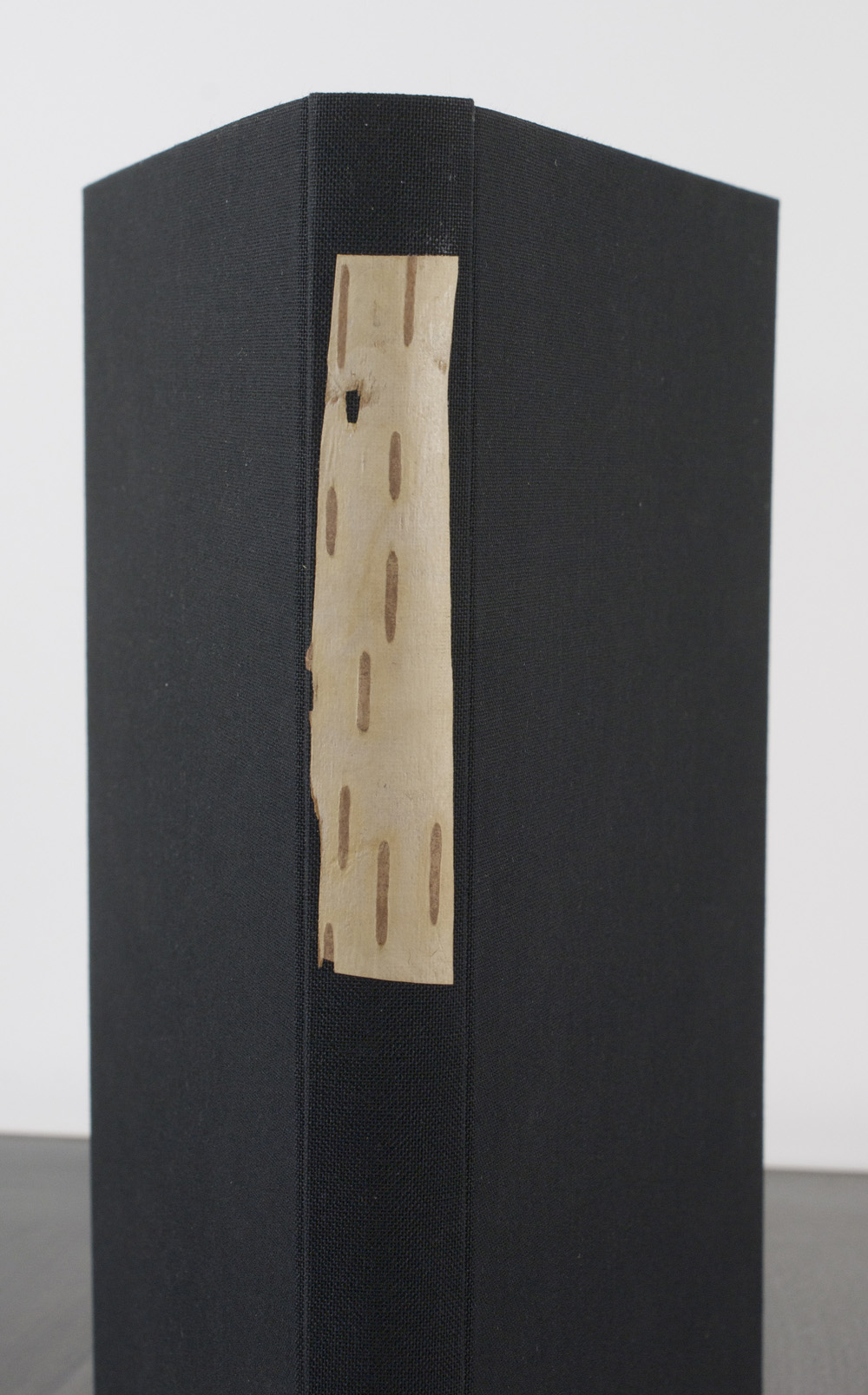 Arini Esarey   Birch Journal , 2010  Birch bark, book cloth, thread, paper