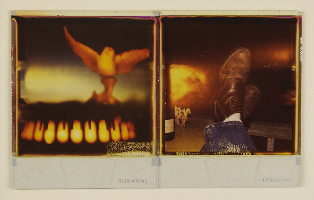Shawn Ferris and Gregor Jamroski   680-SX70 Diptych 1,  2010  Polaroid 600 type film