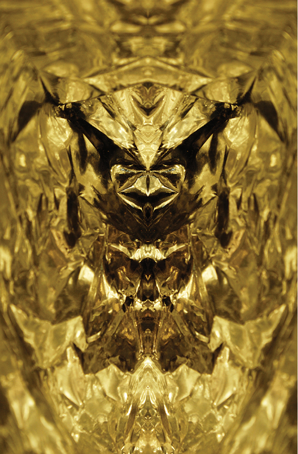 Galen Garwood   Golden Wasp,  2009  Photograph/digital art