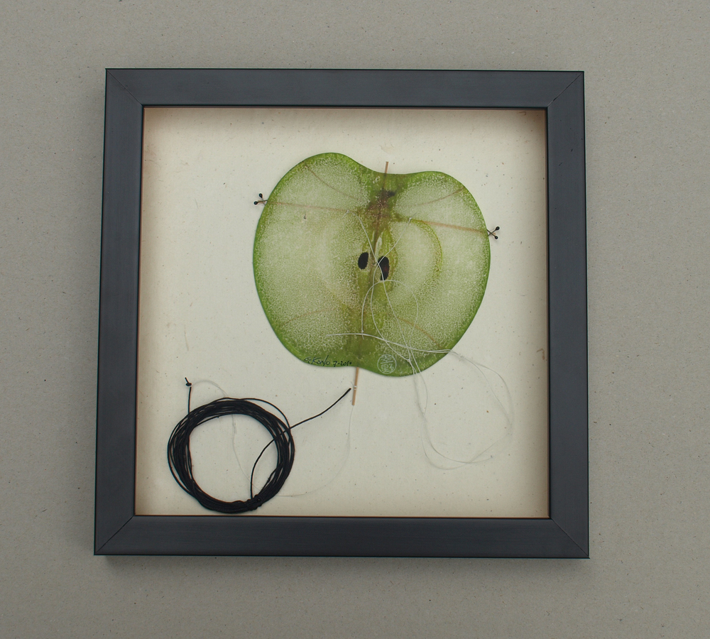 Gregg Kono   Floating Apple Seeds , 2010  Ink transfer on paper, bamboo, and thread