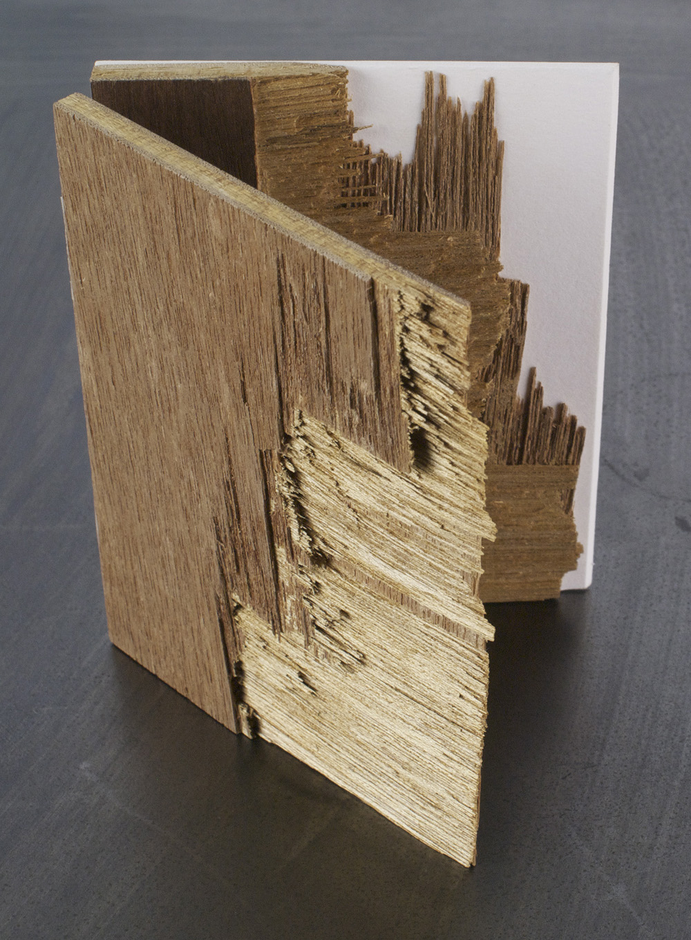 Don Myhre   Splendor in the Splinter , 2010  Mixed media artist's book