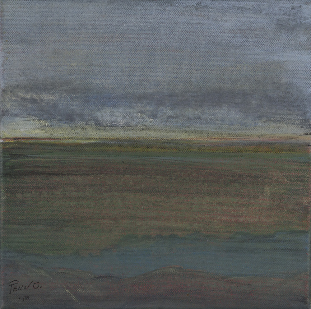 Penn O. Shelton   Channeled Scablands #2,  2010  Acrylic on canvas