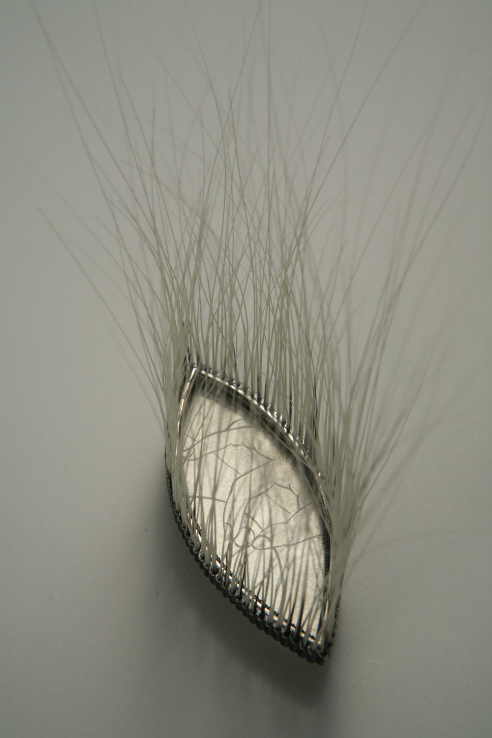 Lori Talcott   Gauging (Brooch) , 2009  Silver, plexiglass, cat whiskers
