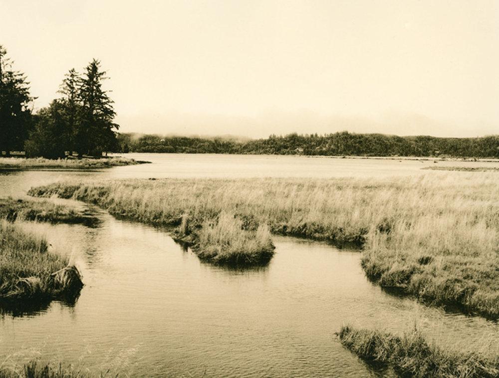 "Joan Bowers  ""Estuary with Fog,"" 2012  pith print photograph  Seattle, WA  8""x10""x0""  $195"