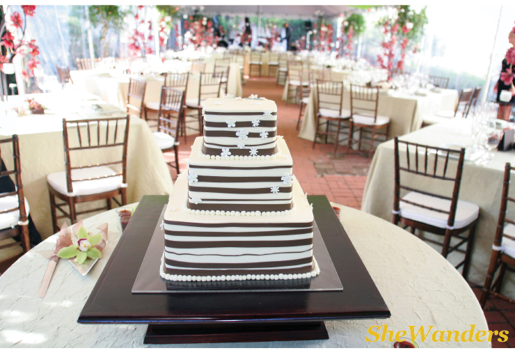 shewanders wedding photography, modern striped cake