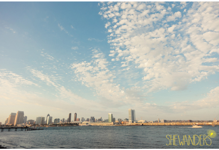coronado wedding photographer, san diego vintage wedding photography, shewanders photography