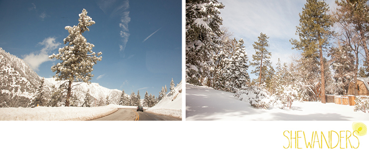shewanders photography, Big Bear, mountain, snow