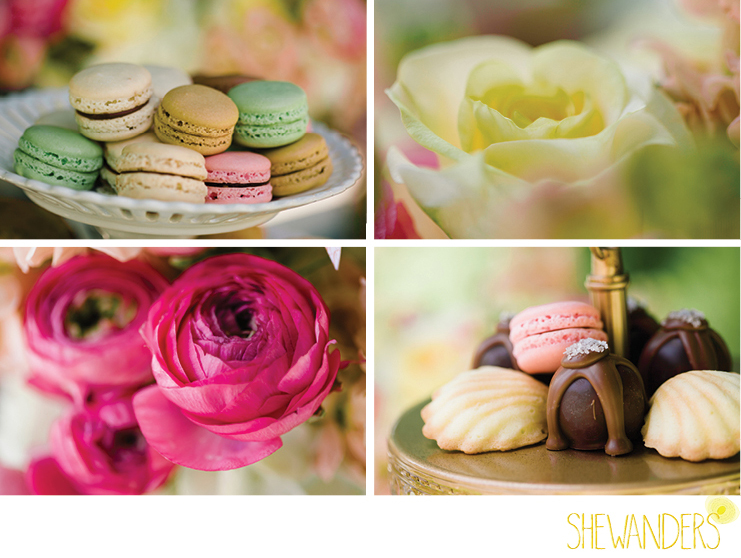 shewanders photography, estancia la jolla, macaroons, cake pops, flowers, colorful