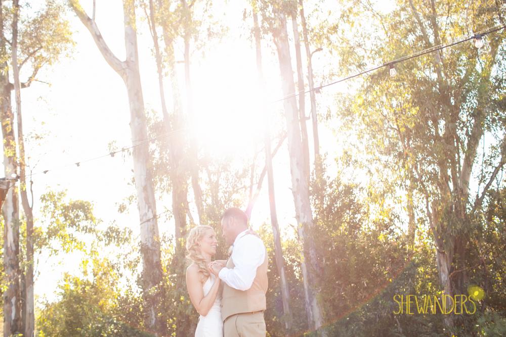 SHEWANDERS.weddings.2012101