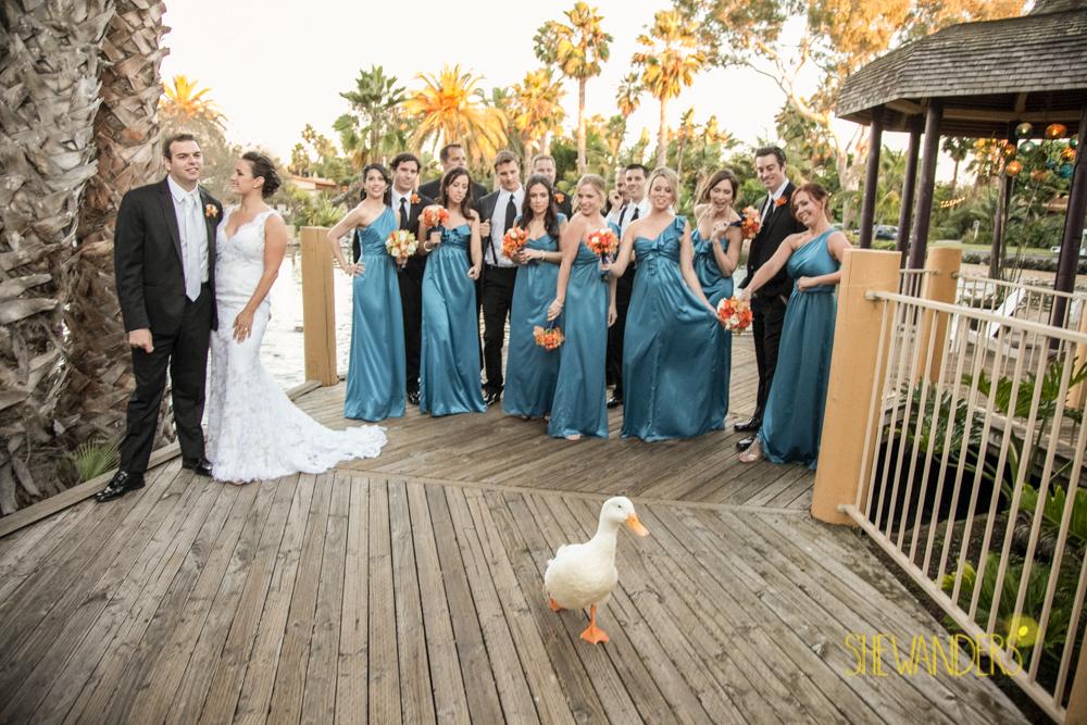 SHEWANDERS.weddings.2012126
