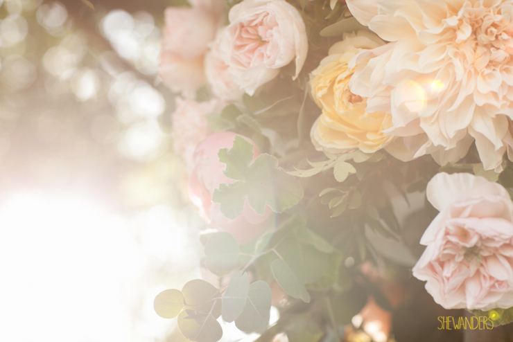 Sun kiss, sun flares, elegant, beautiful, la jolla wedding photography, shewanders wedding photography, luxe events, blush botanicals, brightly designed, la jolla beach and tennis club, exquisite weddings.