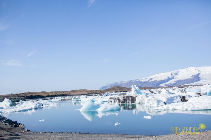 Shewanders.Iceland-1275.1003