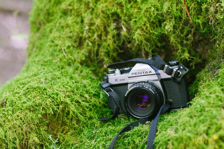 shewanders.wedding.photography.san.diego301