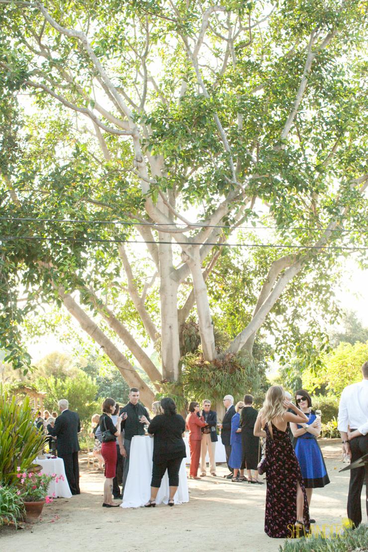 shewanders.wedding.photography.san.diego435