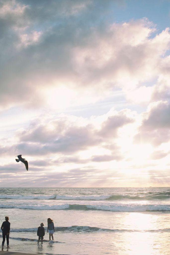 shewanders photography, beach, clouds, birds