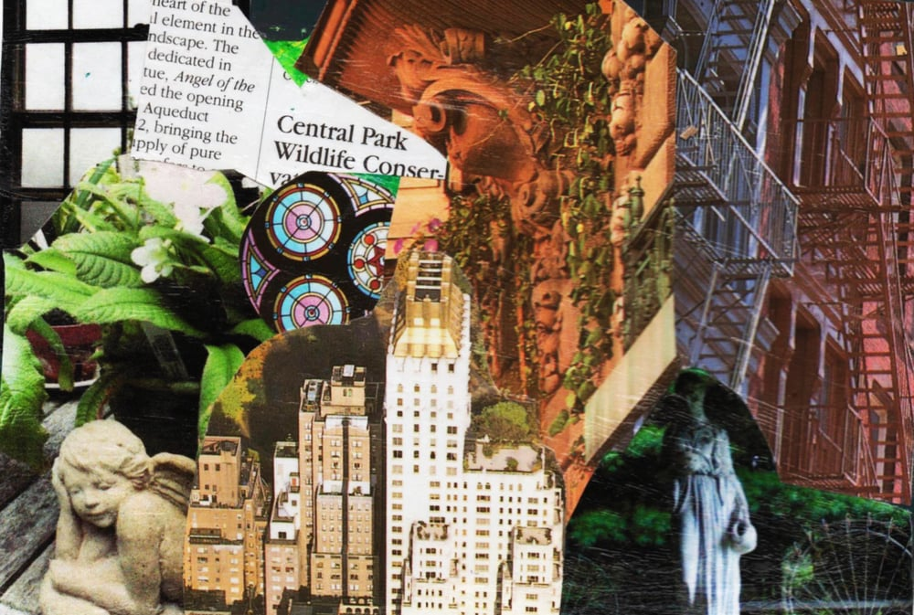 Urban Gardens 2015 M.Ayala #1  copy.jpg