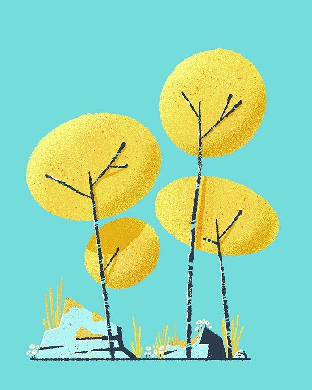 A wee tree study ✏️ 🌳 . . . #designer #illustration #illustrator #nothingisordinary #artsy #procreate #procreateartist #freelance #artstagram #ipadpro #ipadart #tree
