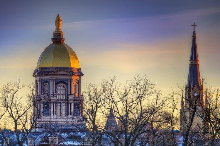 Notre Dame Golden Dome & Basilica.jpg