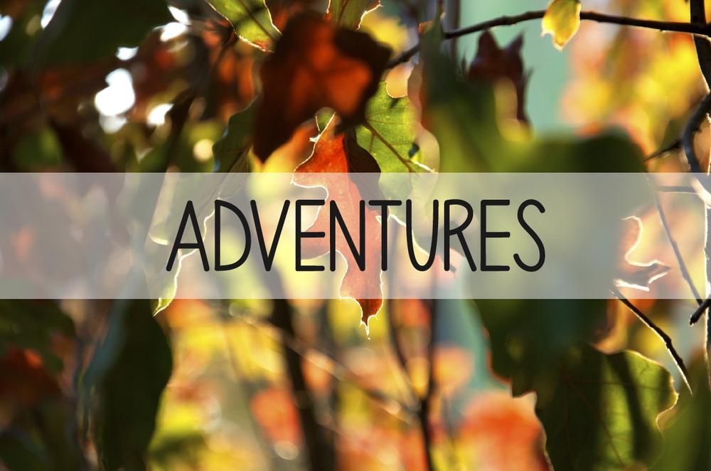 natureitup_adventures.jpg