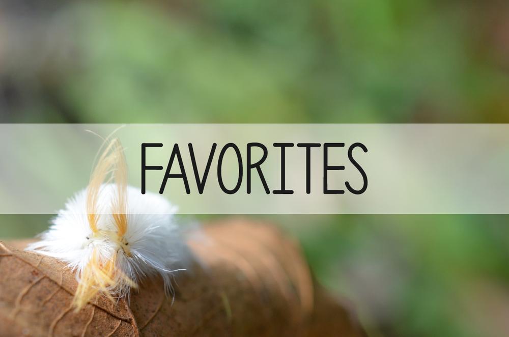 natureitup_favorites.jpg