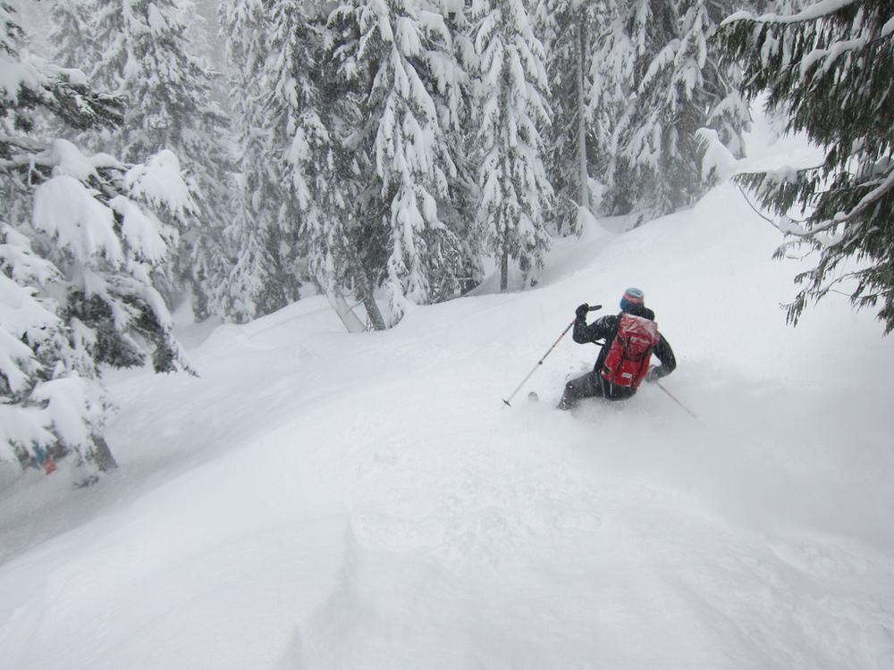 Tree skiing near Whistler. Photo Rich So. Skier Rob