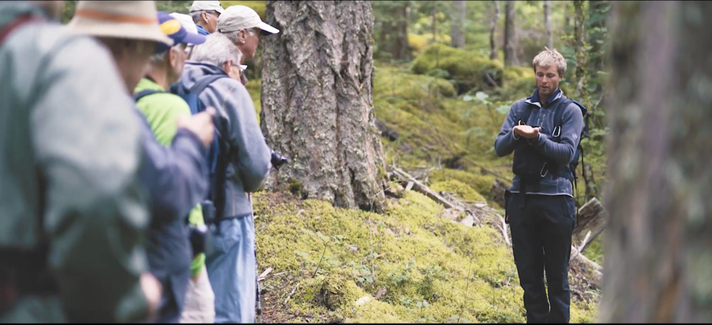 My work at Tweedsmuir Park Lodge involves explaining the ecosystem that supports grizzly bears. Screenshot from Big Journey Company video.