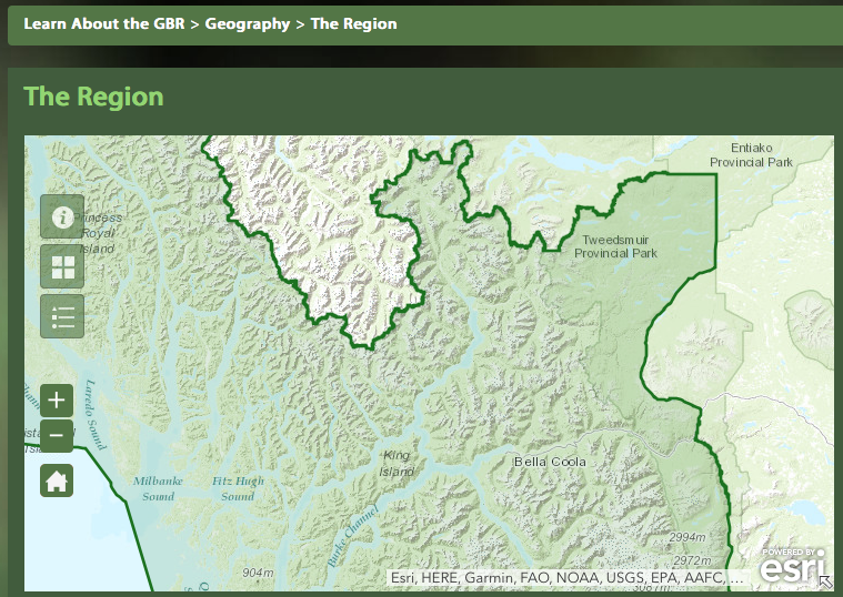Though the Bella Coola area is clearly in the outlined region of the Great Bear Rainforest, it will not receive the full ban on grizzly hunting such as elsewhere in the GBR.