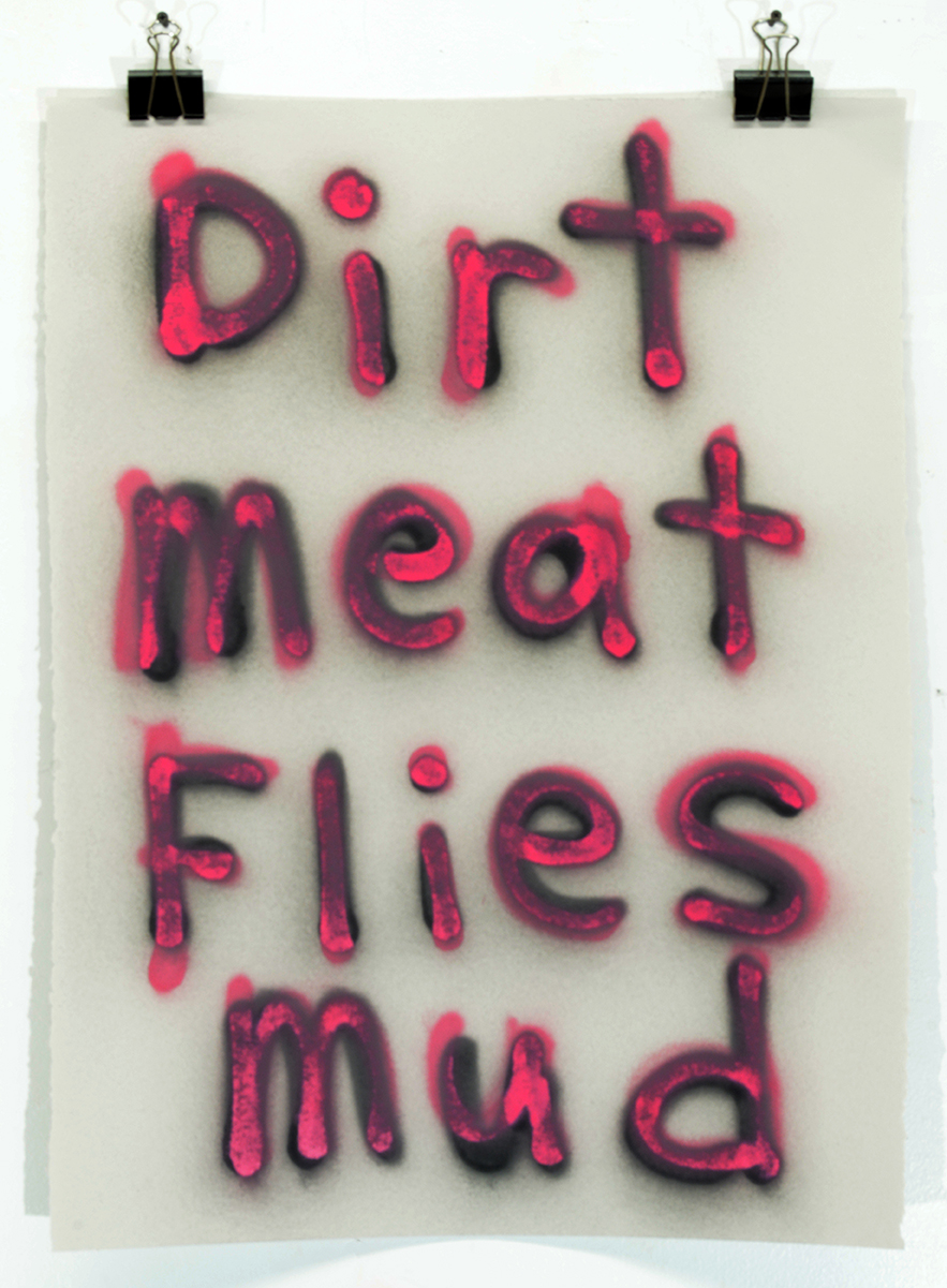 Dirt Meat Flies Mud