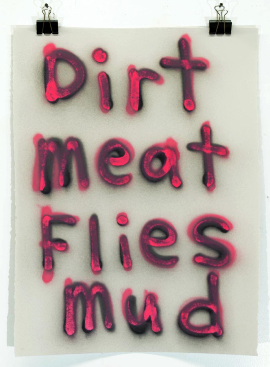 Dirt Meat Flies Mud