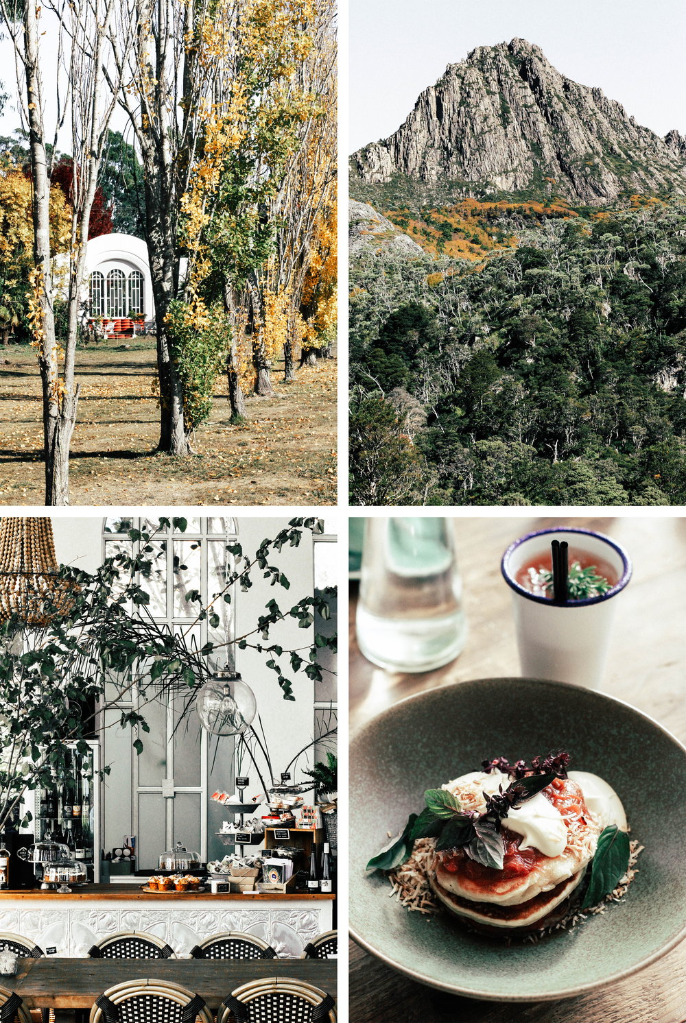 Launceston Guide⎜The Botanical Kitchen