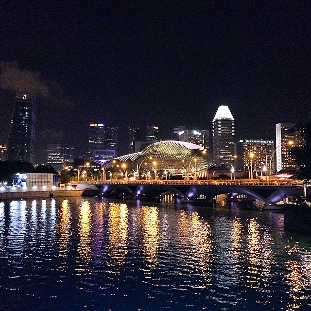The beauty we sometimes take for granted #visualdiary #cityscape #singapore #esplanade #night