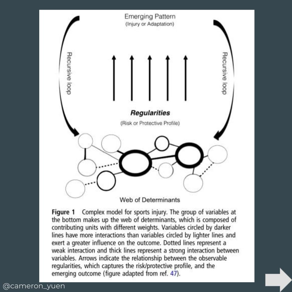 Complex Systems Approach for Sports Injuries (3).jpg