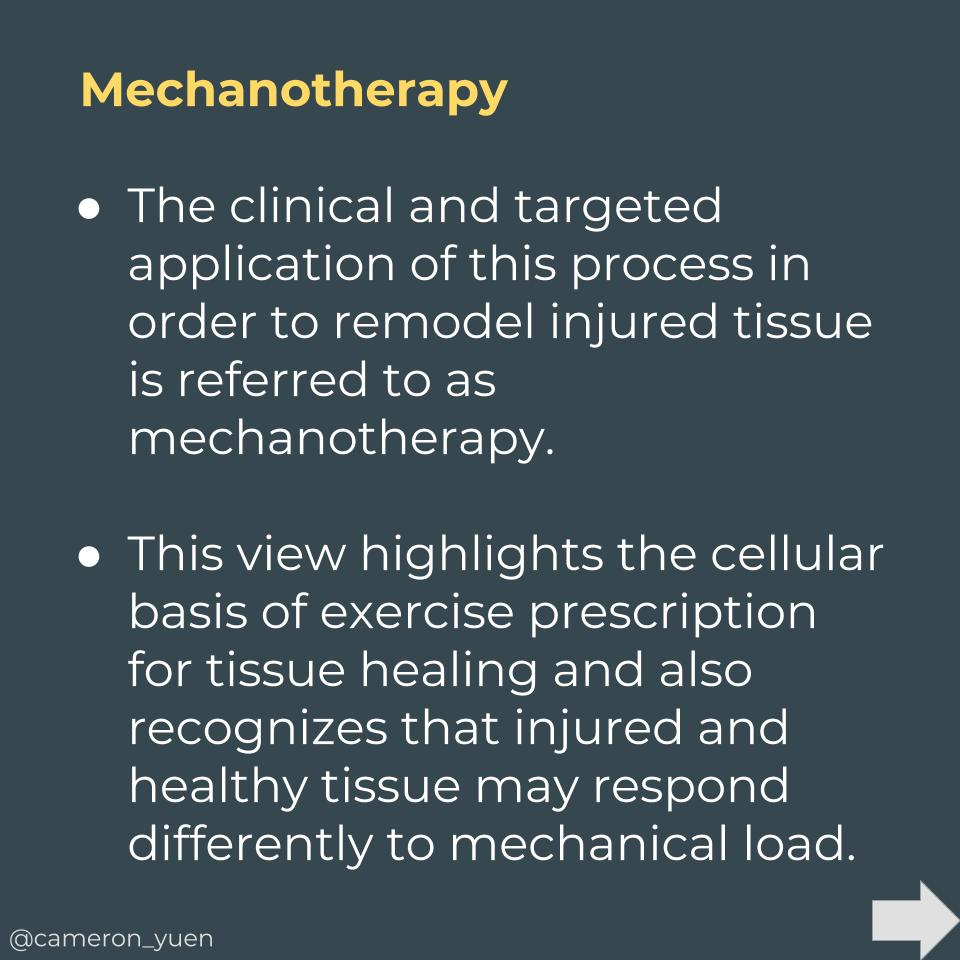 Mechanotherapy (3).jpg