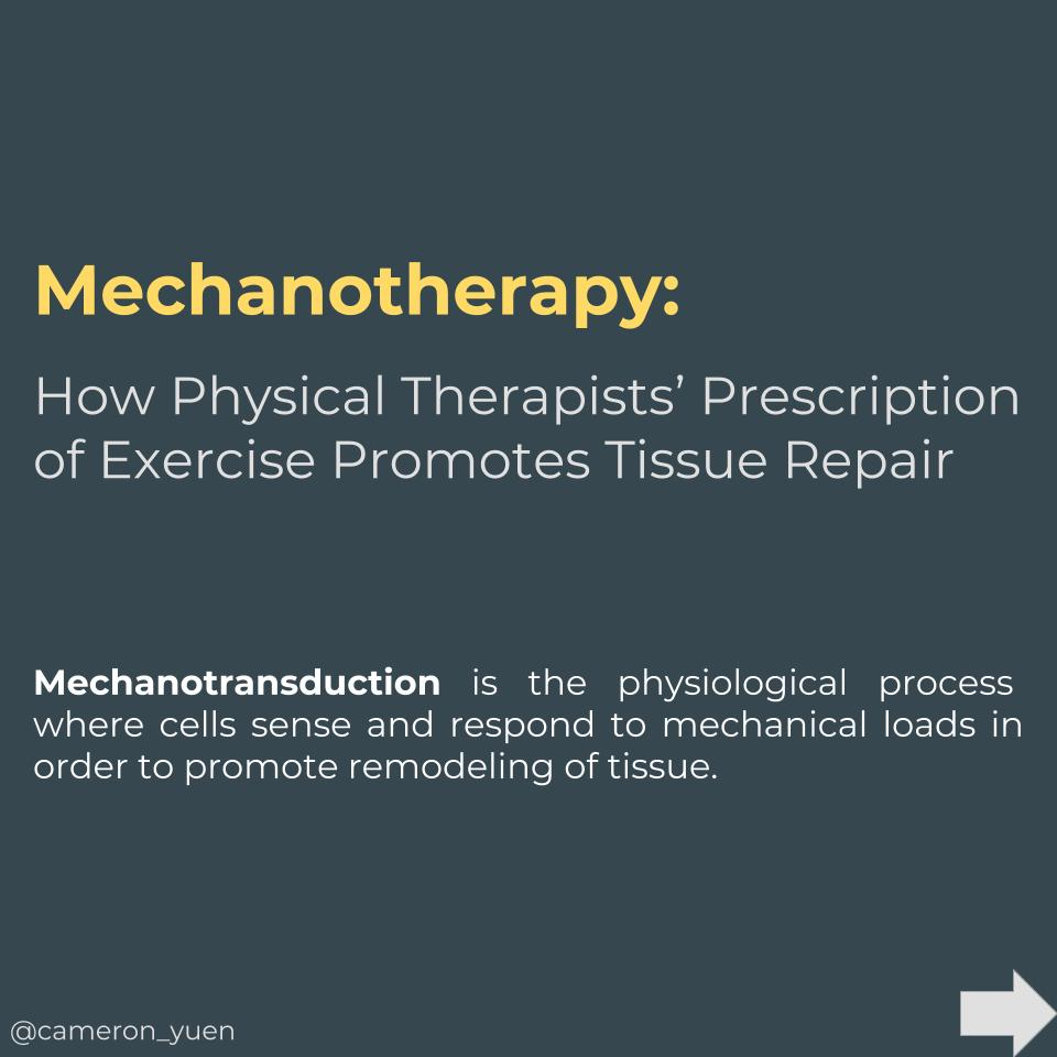 Mechanotherapy.jpg