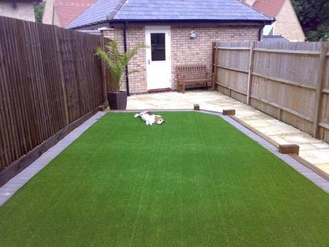 artificial-grass-for-pets.jpg