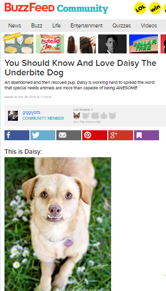 Buzzfeed thinks @underbiteunite is awesome and you should know and love her.