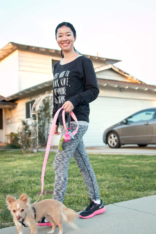 Leash by Squeaker Dogs. Poop bag created by us.