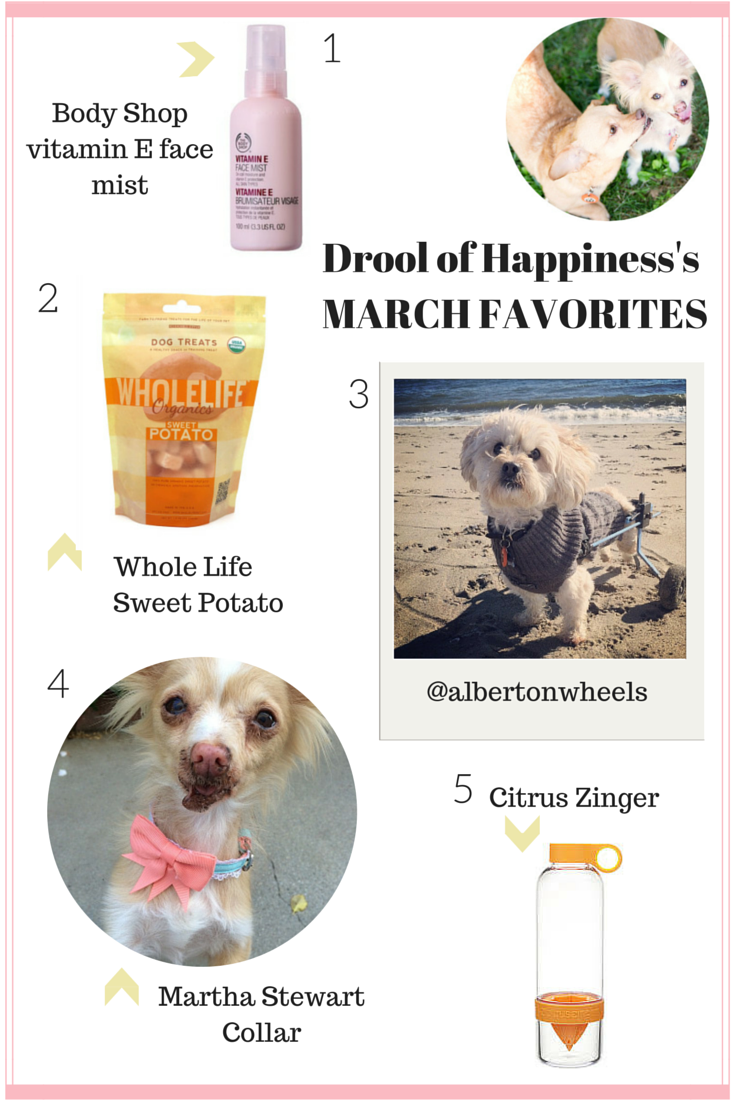 Drool of Happiness's March Favorites 2015